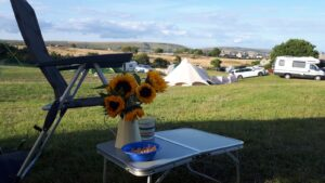 The idyllic setting of Acton Field Campsite near Swanage